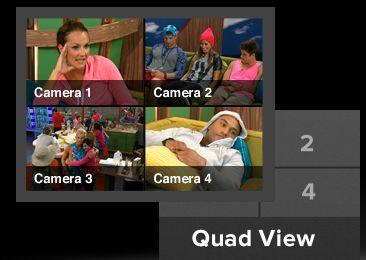 quad-view